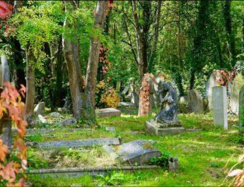 ТРОГОДИШЊАК ЗАПАЊИО СВЕ: Упорно говорио родитељима да је убијен у прошлом животу а онда су отишли на гробље